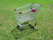 738926_shopping_trolley_study