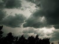 vine-furtuna--2434-l